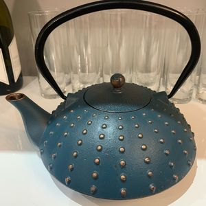 Other - Cast Iron Tea Pot with diffuser